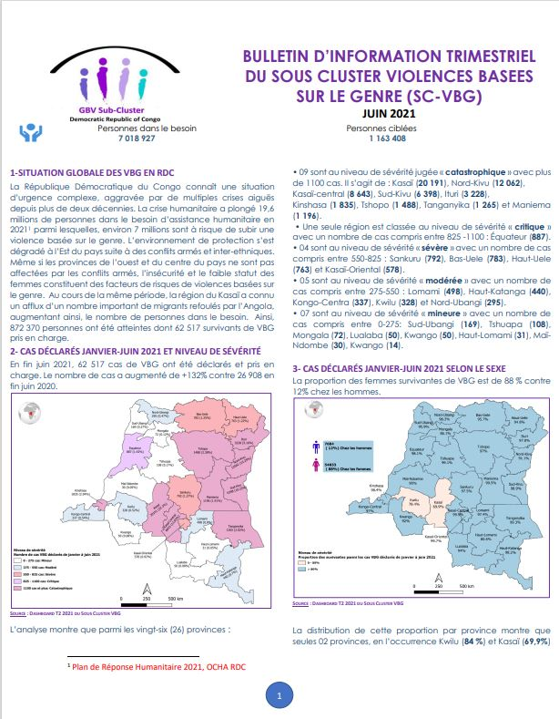 Bulletin trimestriel sous-cluster GBV